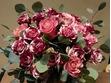 Ziedu pušķis, no Rozēm un eikalipta
